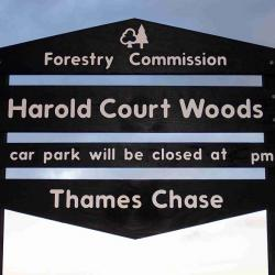 harold court woods tiered sign